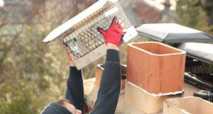 Chimney Cap repair services Thomaston